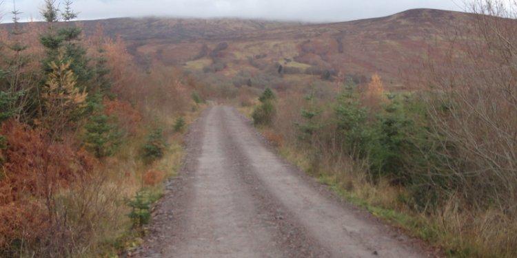 Mountain biking in the